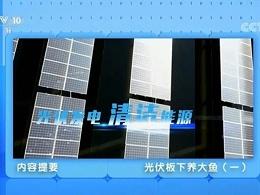 央视科教:太阳能光伏板下可以养大鱼