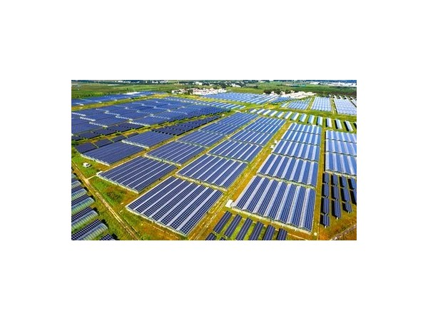 帝斯曼:创新提升太阳能电池板产品质量,为用户提供高效绿色解决方案