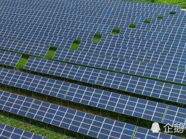 广东佛山将建大型光伏发电站,投资3.8亿元