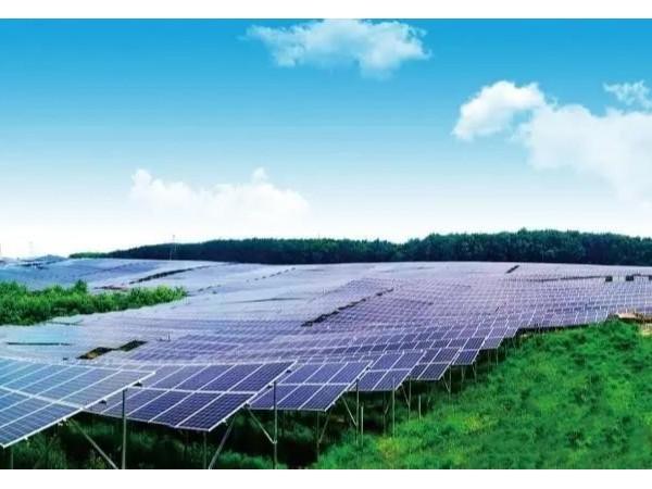 清远投资六亿建设两个农光互补光伏电站