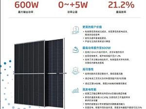 天合光能太阳能板双玻单面至尊双面DEG19C.20天合光能太阳能电池板