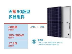 天合光能太阳能板标准多晶天鲸120系列PE06H天合光能太阳能电池板