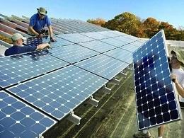 太阳能电池板一年能杀死14万只鸟儿?